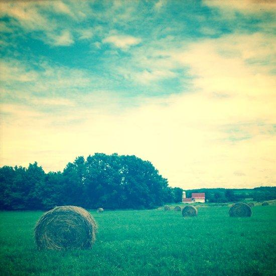 Summer Hay Field Art Print