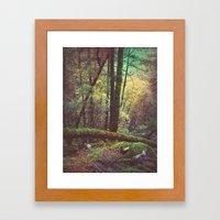 In The Woods  Framed Art Print