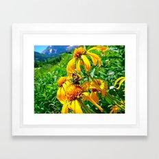 Colorado Butterfly Framed Art Print
