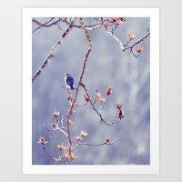 A Bluebird For Isabelle Art Print