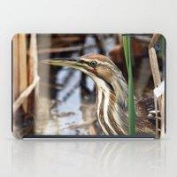 American Bittern - Take … iPad Case