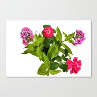 Roses And Phlox Bouquet … Canvas Print