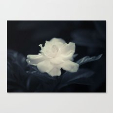 Imperfect Canvas Print