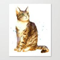 Cute Tabby Cat Canvas Print
