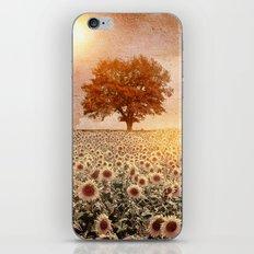 lone tree & sunflowers field (colour option) iPhone & iPod Skin
