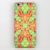 Sphynx Cat Pattern iPhone & iPod Skin