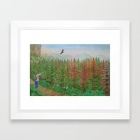 A Day of Forest(8). (coniferous forest) Framed Art Print