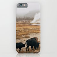 Mother Bison And Calf In… iPhone 6 Slim Case
