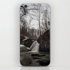 Falling Branch  iPhone & iPod Skin