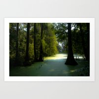 Swamp Land Art Print