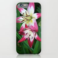 iPhone & iPod Case featuring Three to go. by halfwaytohear