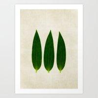 Three Of A Kind 1 Art Print