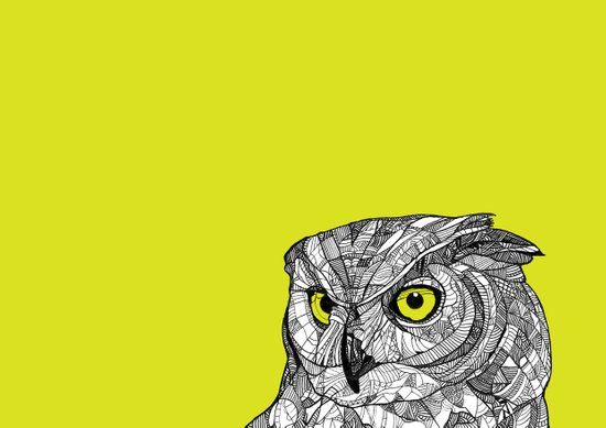 Green Eyed Owl Art Print