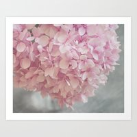 Delicate, Pastel Pink Hy… Art Print