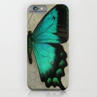Papillon  iPhone 6 Slim Case