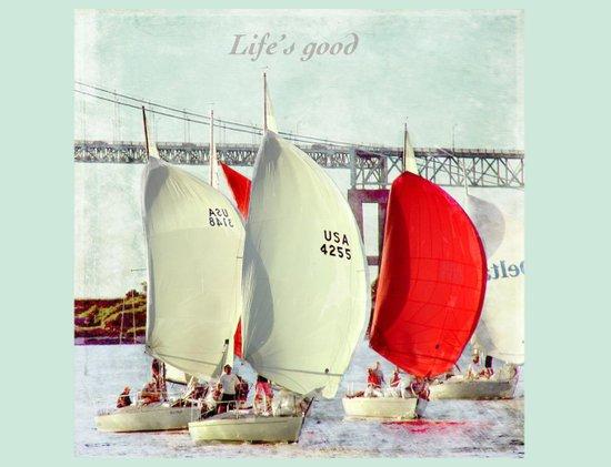 Sailboats in Newport Art Print