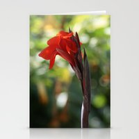 Red Canna Lily Stationery Cards