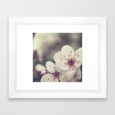 Blossoming  Framed Art Print