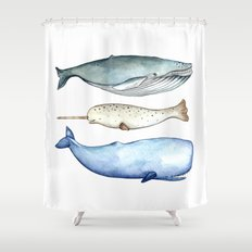S'whale Shower Curtain