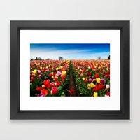 Coloring Vanishing Point, Tulip Festival in Woodburn, Oregon Framed Art Print