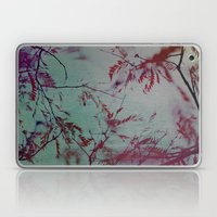 Take Me To Paradise Laptop & iPad Skin