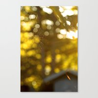 These Fragile Threads Canvas Print
