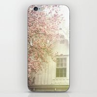 Cottage and Magnolias iPhone & iPod Skin