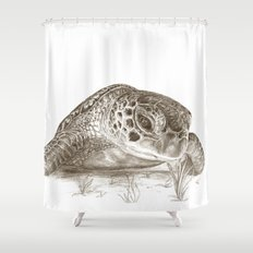 A Green Sea Turtle :: Earthtones Shower Curtain