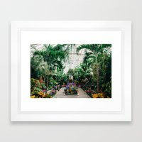 The Main Greenhouse Framed Art Print