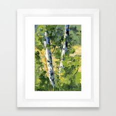 Aspens - Ready to Turn Yellow... Framed Art Print