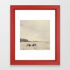 Sparring Elk in Wyoming - Wildlife Photography Framed Art Print