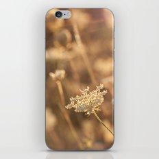 Sunflare iPhone & iPod Skin