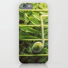 Music of the Fiddleheads iPhone 6 Slim Case