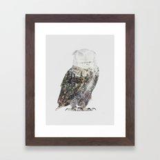 Arctic Owl Framed Art Print