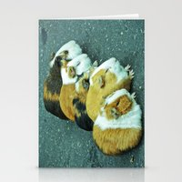 Animals On The Road Play… Stationery Cards