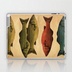 One fish Two fish Laptop & iPad Skin