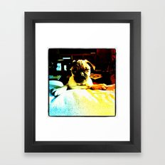 Beto Framed Art Print