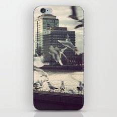 Pigeon Whisper    iPhone & iPod Skin
