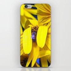 Yellow Sunflowers, Blue Bee iPhone & iPod Skin