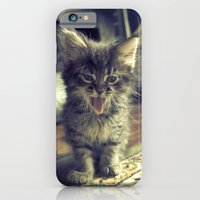 iPhone Cases featuring bleh! by Pope Saint Victor