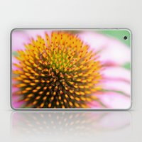 Coneflower Laptop & iPad Skin