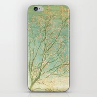 Searching iPhone & iPod Skin
