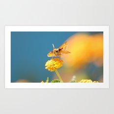 wings. Art Print