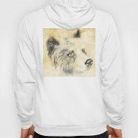Rembrant Bear Hoody