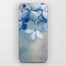 encounter iPhone & iPod Skin