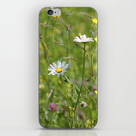 Wild meadow iPhone & iPod Skin