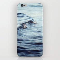 The Curl iPhone & iPod Skin