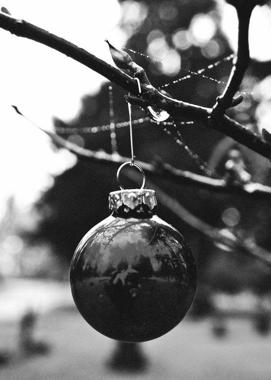 Lonely ornament Art Print