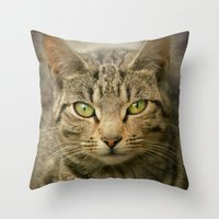 The Irish Cat Throw Pillow