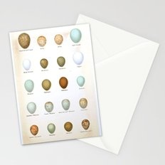 Vintage Bird Eggs  Stationery Cards